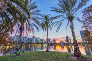 Palm tress decorated with lights at Lake Eola in downtown Orlando